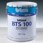 bts100_web_main